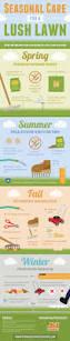 Interior Garden Services Best 25 Gardening Services Ideas On Pinterest Herb Quick