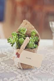 rustic wedding favor ideas plant wedding favours ideas succulent wedding favours