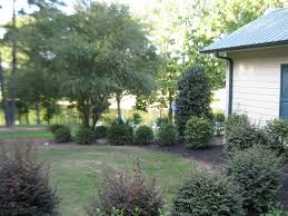 Backyard Guest Cottage by Charming Guest Cottage Very Private 25 M Vrbo
