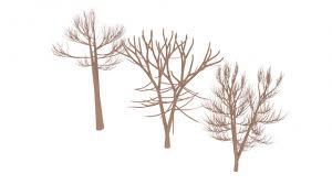 plants 3d models free 3d plants
