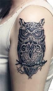 Owl Shoulder - shoulder tattoos designs pictures page 2