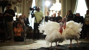 white house thanksgiving a history of us presidential turkey