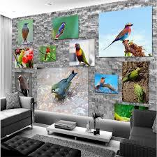 parrot home decor modern wallpaper home decor custom background photo wallpaper hd