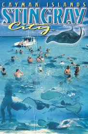 Grand Cayman Islands Map 23 Best Starfish Point Near Retreat At Rum Point 23 Images On