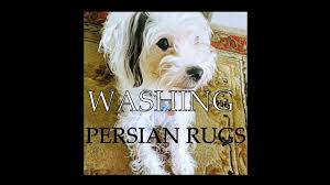 How To Wash Rugs At Home How To Clean Persian Rug By Hand At Home Youtube