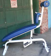 Nautilus Bench Nautilus Commercial Sit Up Bench 495