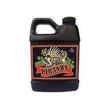 piranha advanced nutrients advanced nutrients piranha liquid fertilizer 250ml urbanrootstampa