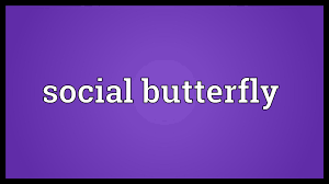 social butterfly meaning