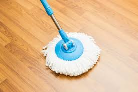 Best Wood Floor Mop Best Mop For Wood Floor 5 Home Decoration