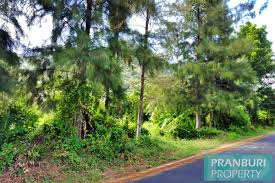 below market value mountain view land for sale with road frontage