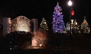 west to light tree on the green on saturday
