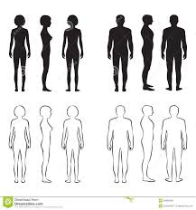 Human Figure Anatomy Human Body Anatomy Stock Vector Image 50668460