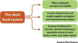 diversifying food systems in the pursuit of sustainable food