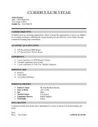 resume cv format resume cv format freshers professional resume format for freshers