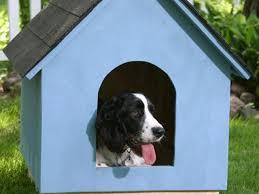 Dog Kennel Floor Plans Dog Kennel Floor Plans Od Semberije – White