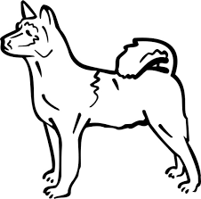 perfect dogs color coloring book ideas 8238 unknown
