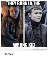Memes Game Of Thrones - they burned the wrong kid enjoy game of thrones memes at