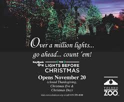 Toledo Zoo Christmas Lights by Ryan Terry