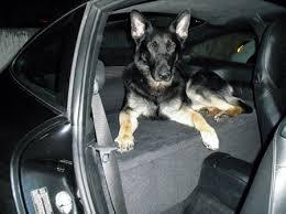 porsche 911 car seats custom porsche car seat kristopher dukes com
