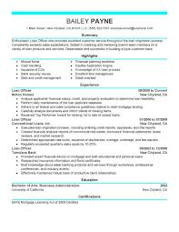 Job Developer Resume by How To Make Good Resume For Job Developer Professional Resumes