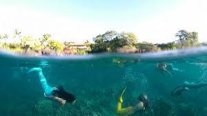 mermaid swimming lessons on maui mermaid adventures