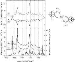 inspecting chiral molecules by raman optical activity spectroscopy