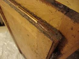 How To Clean Oak Kitchen Cabinets by Delectable 80 Best Way To Remove Grease From Kitchen Cabinets