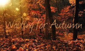 Why Fall Is The Best Season The Best Season Is Almost Here U2013 Briskautumn
