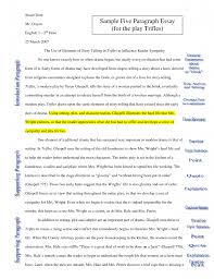 Basic Essay Example Essay Examples 5 Paragraph