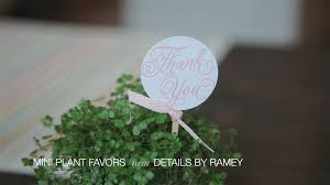 plant wedding favors how to make mini plant wedding favors