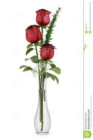 three red roses in glass vase on white stock image image 25635721