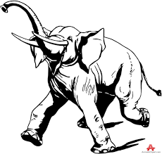 happy running elephant outline drawing free clipart design download