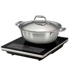 Nuwave2 Induction Cooktop Eurodib Induction Cooktop Combo