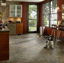 Best Flooring With Dogs 12 Best Fabric And Floor With Pets Images On Pinterest Flooring