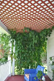15 best wisteria support images on pinterest garden trellis