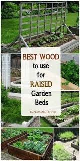 Raised Gardens Ideas How To Build A 4 Raised Garden Bed For Less Than 20 These