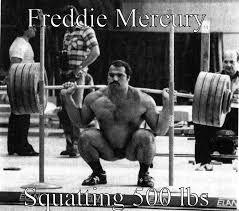 Freddie Mercury Meme - freddie mercury quickmeme
