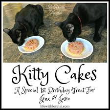 kitty cakes a birthday treat for jinx and josie life with lorelai