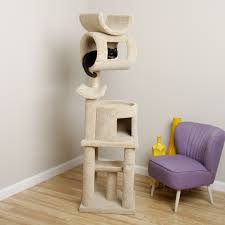 Shabby Chic Living Room by Interior Shabby Chic Living Room With Armarkat Cat Tree
