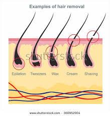 best 25 best hair removal cream ideas on pinterest best