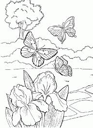 butterfly garden coloring pages adults coloring pages