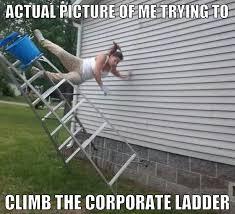 Ladder Meme - theauditmemes on twitter theauditmemes auditmemes audit
