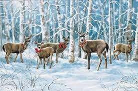 pumpernickel press wildlife cards moonlight wildlife themed christmas cards