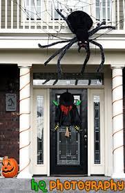 halloween spider u0026 witch photo