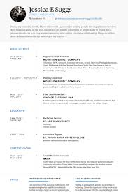 Personal Assistant Resume Examples by It Assistant Resume Samples Visualcv Resume Samples Database