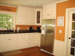 Updated Kitchens by Painting Kitchen Appliances Pictures Ideas From Hgtv Idolza