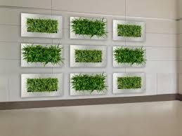 wall planters indoor myfavoriteheadache com myfavoriteheadache com