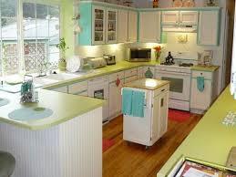 1950s home design ideas 1950 decorating ideas houzz design ideas rogersville us