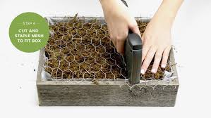 how to make a succulent wall garden proflowers