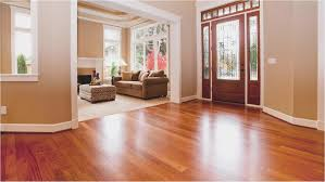 Floor Shark Steam Cleaner Solution Best Cleaner For Laminate Mop For Wood Floors Bona Wood Floor Spray Mop Kit Alt Image 5